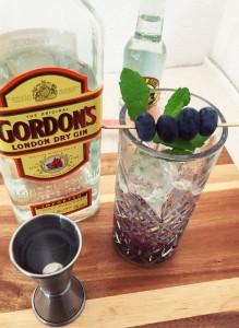 Blueberry Lemon Gin Tonic
