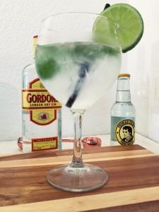 Perfecte Gin Tonic