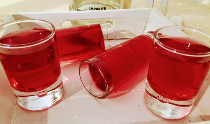 Cranberry Vodka shots jello